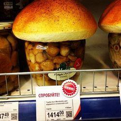 Чехія заросла грибами