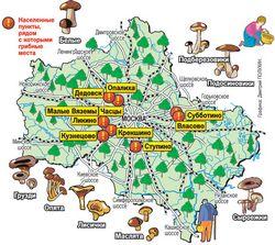 Грибні місця Іркутська