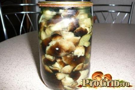 Консервовані мариновані гриби шиітаке
