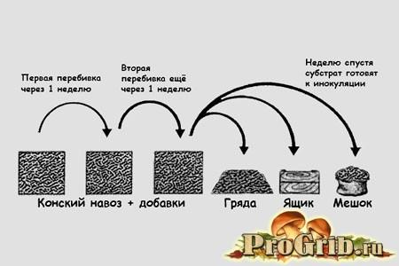 схема підготовки субстрату для печериць
