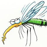 Комарі прилетіли