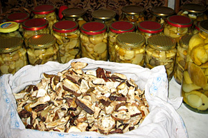 Xраненіе маринованих грибів