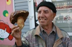 На ринках Барнаула відзначається наплив грибників