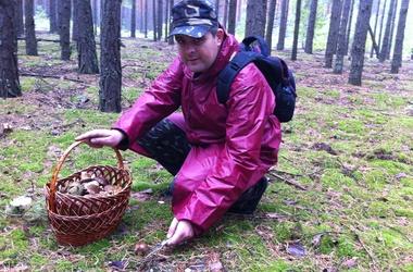 Небезпеки грибного полювання: білі - з радіонуклідами, а поганки маскуються під сироїжки