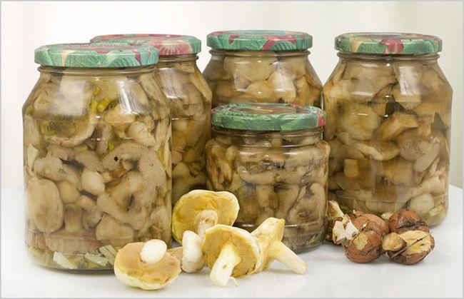 Окремої уваги заслуговують мариновані та солоні гриби. Фото: Fotolia / PhotoXPress.ru