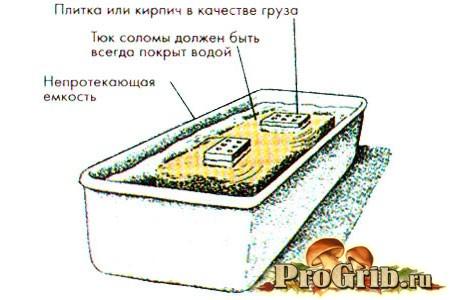 Підготовка субстрату будинку