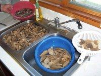Приготування сморчків