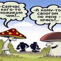 Приколи - анекдоти. про гриби і грибників.
