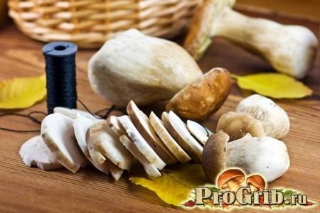 Підготовка грибів до сушіння