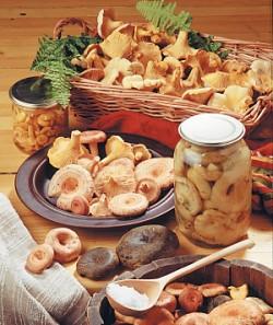 Соління грибів