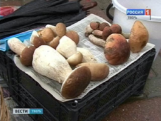 Фахівці рекомендують бути обережніше з грибами