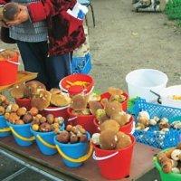 На ринках з'явилися бабусі торгують всілякими грибами і ягодами