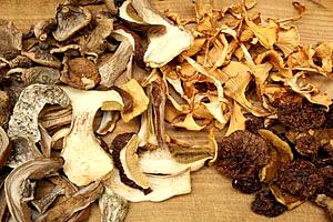 Сушка та зберігання сушених грибів