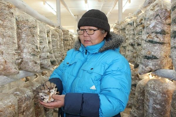 Вчителька з Бурятії відкрила ферму з вирощування грибів
