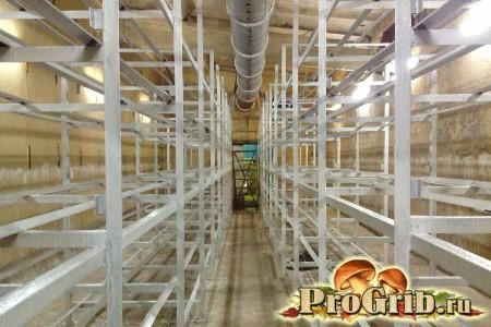 Стелажі для вирощування грибів