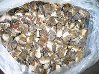 Заготівля грибів заморожуванням