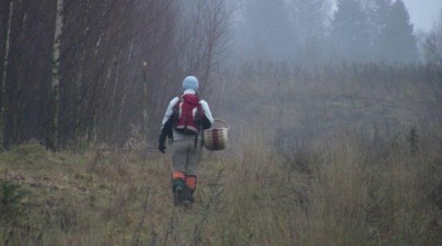Жителі Хмельницької області України будуть платити податок за збір грибів та ягід